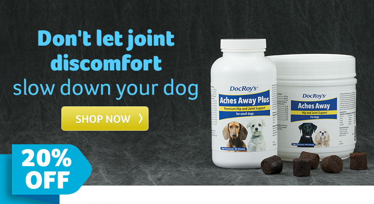 Don't let joint discomfort slow down your dog