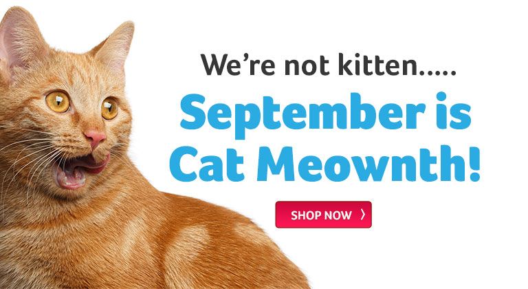 The cat is out of the bag! September is Cat Month