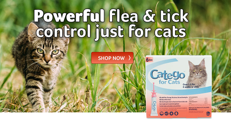 Powerful flea and tick control just for cats