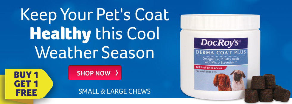 Keep Your Pet's Coat Healthy this Cool Weather Season