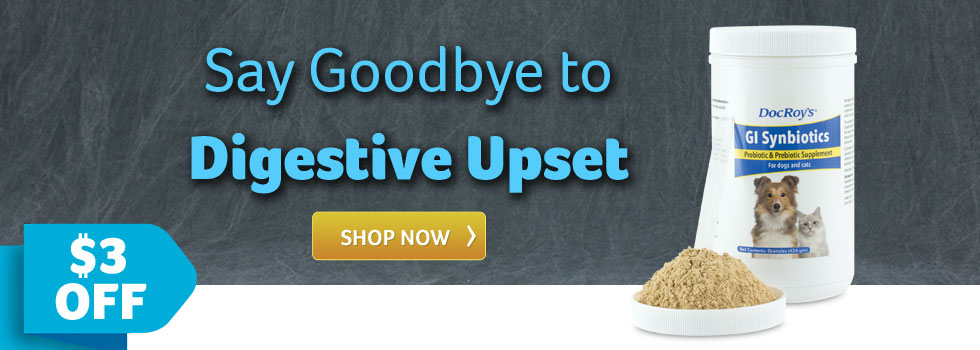 Say Goodbye to Digestive Upset