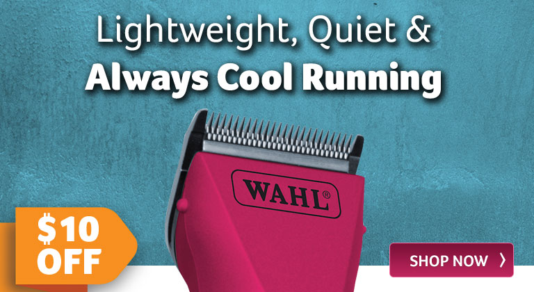 Lightweight, Quiet and Always Cool Running