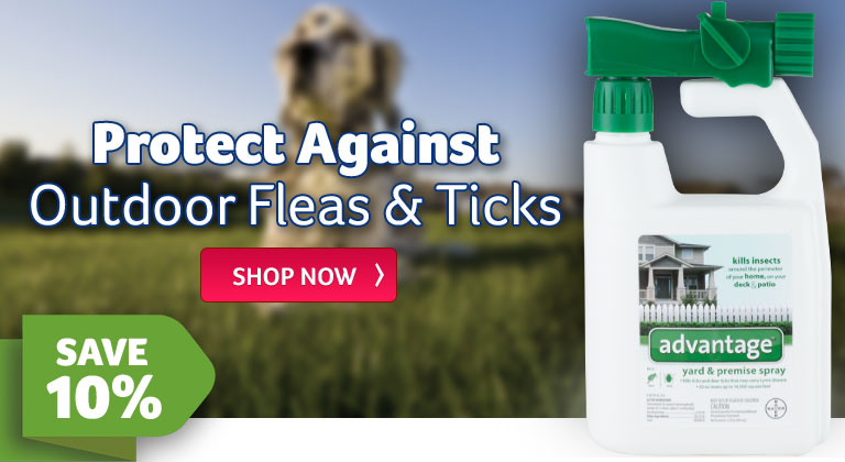 Protect Against Oudoor Fleas And Ticks