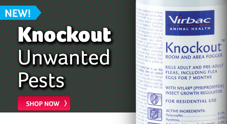 Knockout Unwanted Pests