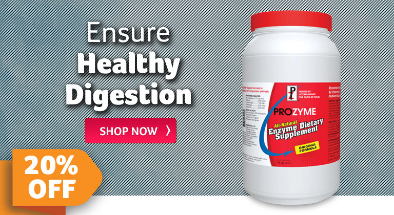 Ensure Healthy Digestion