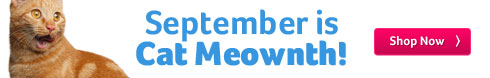 September is Cat Month!
